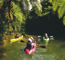 ジャングルカヌー体験
