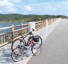 大宜味村サイクリングレンタル